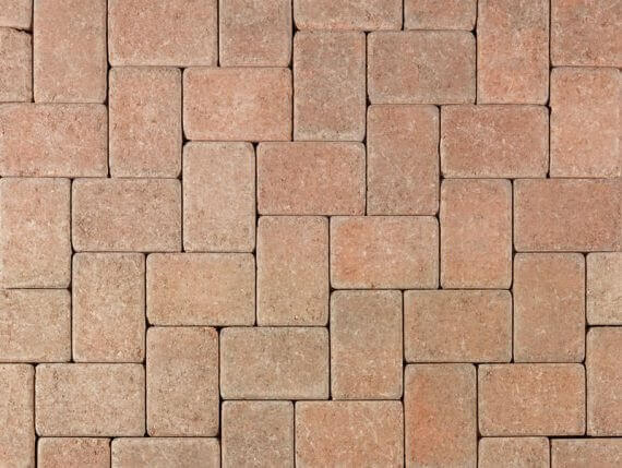 Cream TerraCotta Brown Tumbled