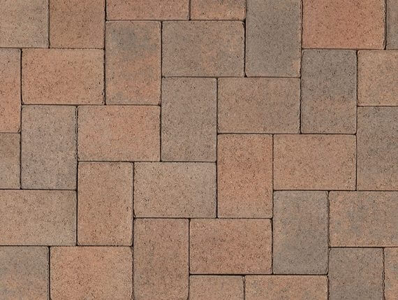 Cream TerraCotta Brown